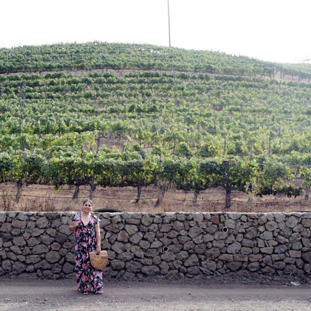 malibu wine safaris