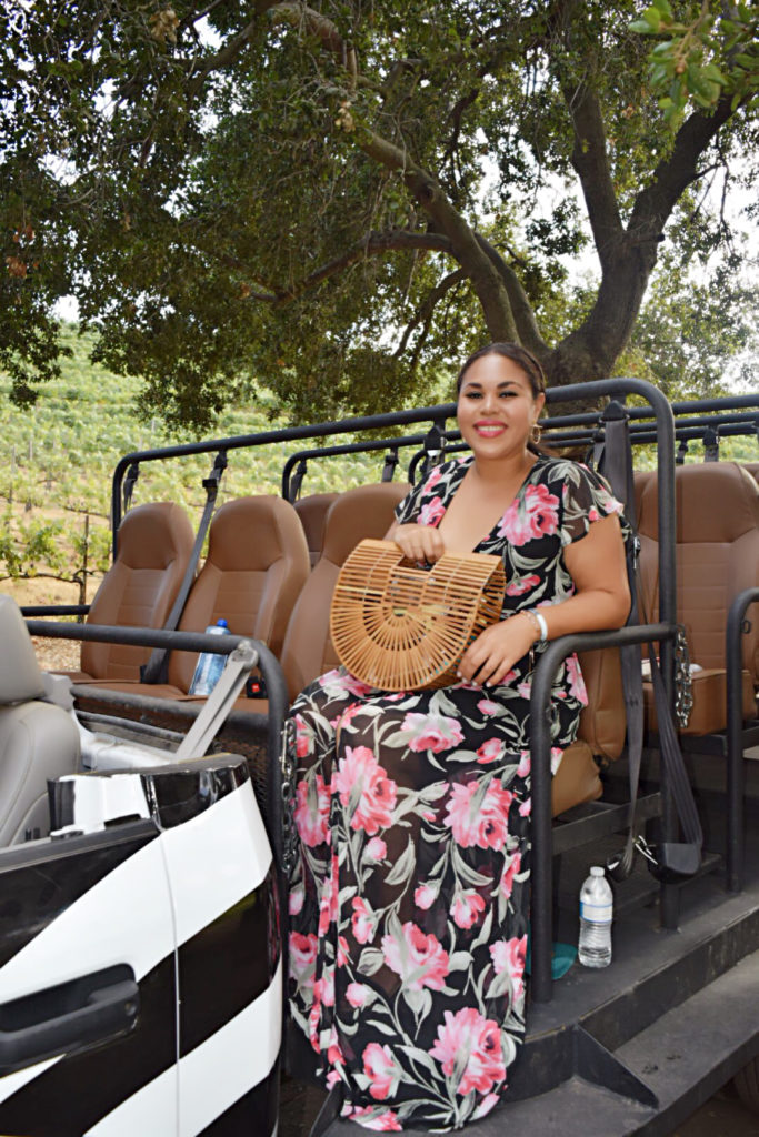 malibu wine safari tour review