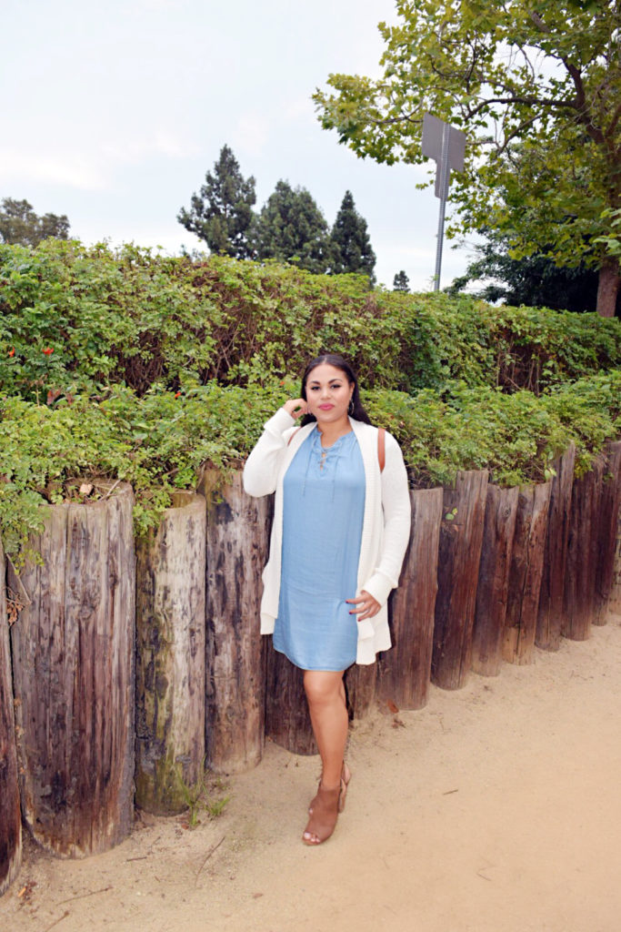 fall chambray dress